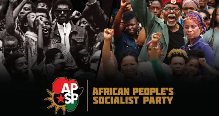 NorthEast Regional Conference of the African Peoples Socialist Party
